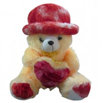 16 Inches Hated Teddy Bear with Heart