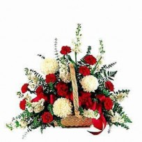 Basket of 20 red and white carnations decorated with filler and ribbon