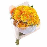 Yellow Gerbera Bouquet 12 Flowers