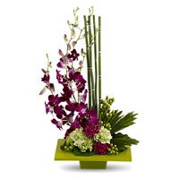 5 Orchids 10 Carnation Flower Arrangement