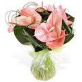Anthurium in Vase 12 Flowers