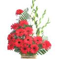Gerbera Glad Basket 15 Flowers