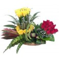 Arrangement of Red & Yellow Roses