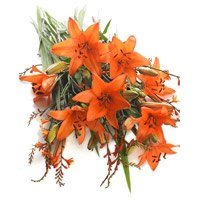 Orange Lily Bouquet 9 Flower Stems