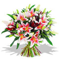 Oriental Pink Lily Bouquet 7 Stems