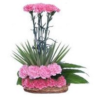 Pink Carnation Arrangement 20 Flowers