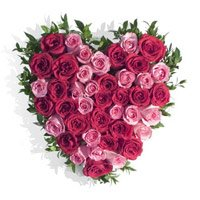 Pink Red Roses Heart 50 Flowers