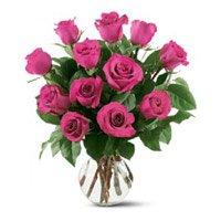 Pink Roses in Vase 12 Flowers