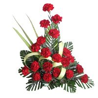Red Carnation Arrangement 20 Flowers