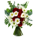 Red Rose White Gerbera Bouquet 12 Flowers