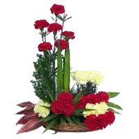 Red Yellow Carnation Arrangement 24 Flowers