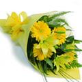 Yellow Gerbera Bouquet 24 Flowers