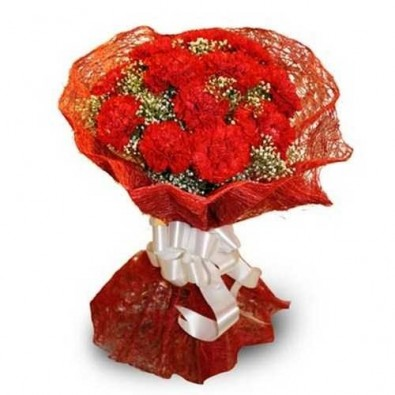 Bunch of 12 red carnations