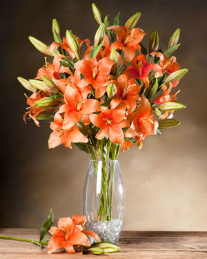 Orange Lily Vase 8 Flower Stems