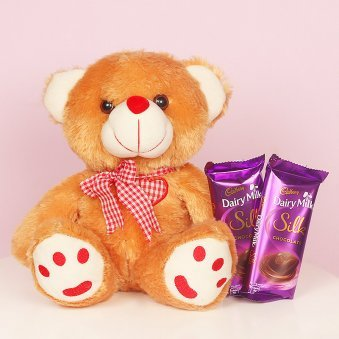 12 cute Teddy with sweet