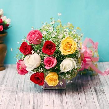 Shades of Roses
