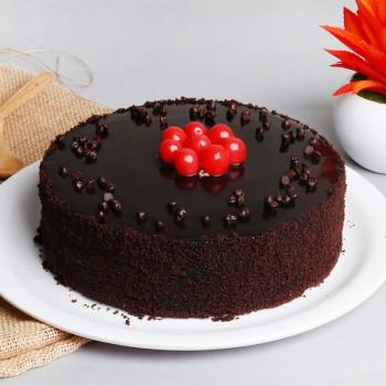 500 gms Chocolate Truffle Cake