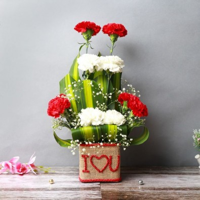 10 Mixed Carnations Love You Florally