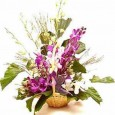 Orchids Arrangement