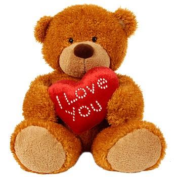 Teddy 12 inch