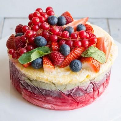 500 gms Fruity Yogurt Delight