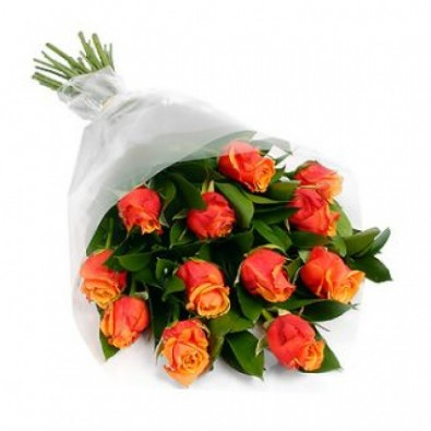Beautiful bunch of 12 orange rose.