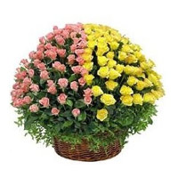 100 Pink and Yellow Roses Basket