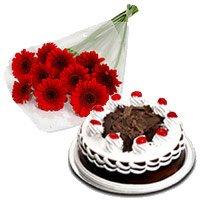 12 Red Gerbera 500 gms Black Forest Cake