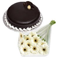 12 White Gerbera 1 Kg Chocolate Truffle Cake