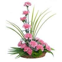 15 Pink Carnation Arrangement