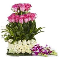 20 Pink Rose 25 White Rose 6 Orchids Flower Basket