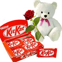 24 Nestle Kitkat Bars Box 360g with 6 inch teddy and single red rose