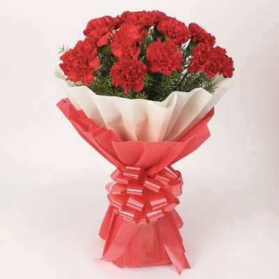 12 Red Carnation Bunch