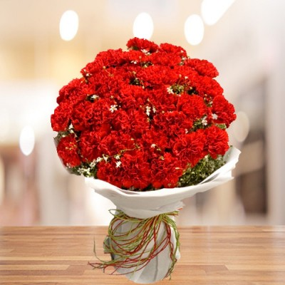24 Red Carnation Bunch