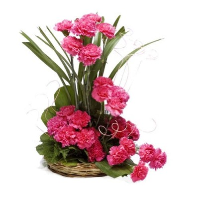 18 pink Carnations basket decorated with green leaves and white filers