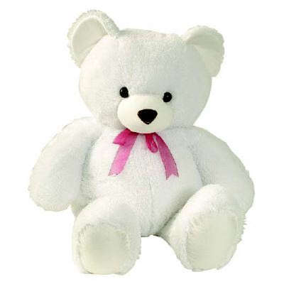 Teddy Bear 12 Inch Tall