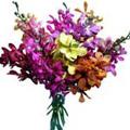 Mix Orchids Bouquet 6 Flowers