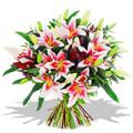 Oriental Pink Lily Bouquet 7 Stems