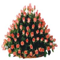 Peach Roses Basket 100 Flowers