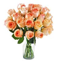 Peach Roses in Vase 12 Flowers