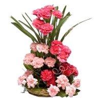 Pink Carnation Basket 24 Flowers