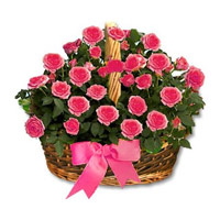 Pink Roses Basket 24 Flowers