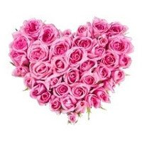 Pink Roses Heart 24 Flowers
