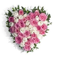 Pink White Roses Heart 50 Flowers