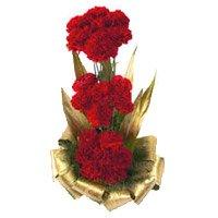 Red Carnation Basket 30 Flowers