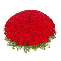 Red Roses Basket 1000 Flowers