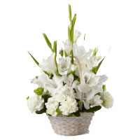 White Glad Basket 12 Flowers