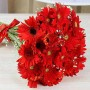 Red Gerbera Bouquet 36 Flowers